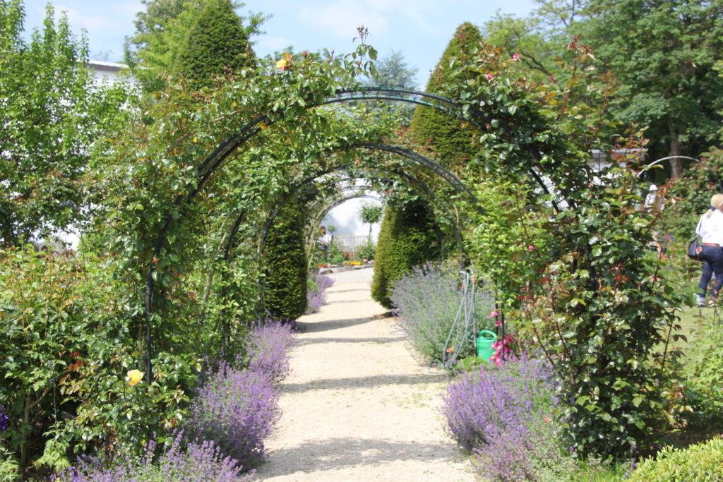 Spaliere im Rosengarten Hadamar verwandeln die Wege in verzauberte Gänge.